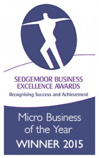 Sedgemoor Business Excellence Awards 2015